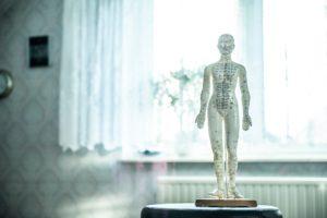 menneskefigur med mamrkeringer af energibaner til akupunktur eller oesteopati